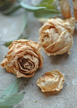 cmo hacer un centro de flores secas