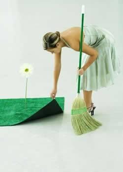 Productos y trucos caseros para la limpieza ecol gica del - Productos de limpieza caseros ...