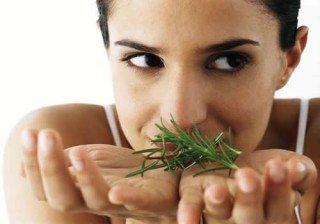 Plantas para combatir la celulitis