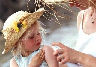 Insectos en verano: soluciones para alejar de tu casa moscas, mosquitos, hormigas, ara�as...