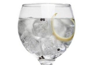 10 trucos para servir el mejor gin-tonic