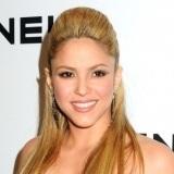Shakira, con un semi recogido