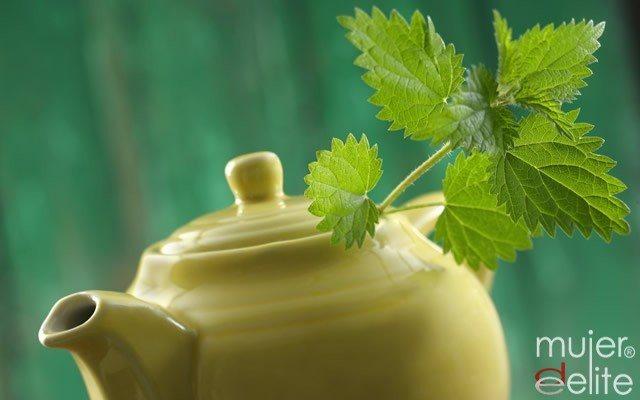 Plantas para reducir la celulitis