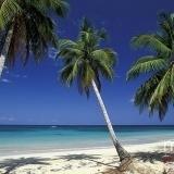 Playa Palm Beach en El Caribe