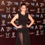 Blanca Su�rez apost� por las transparencias y el negro para asistir a los premios Goya 2014
