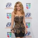 Shakira, en reposo por su embarazo
