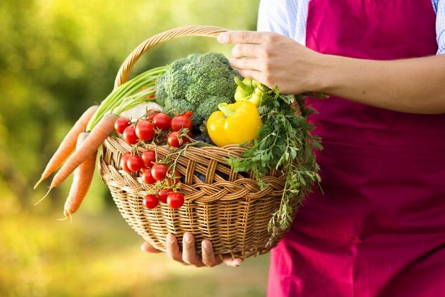 Foto Las hortalizas y verduras de otoño