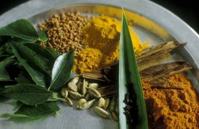 Foto Las especias, imprescindibles en la cocina hindú