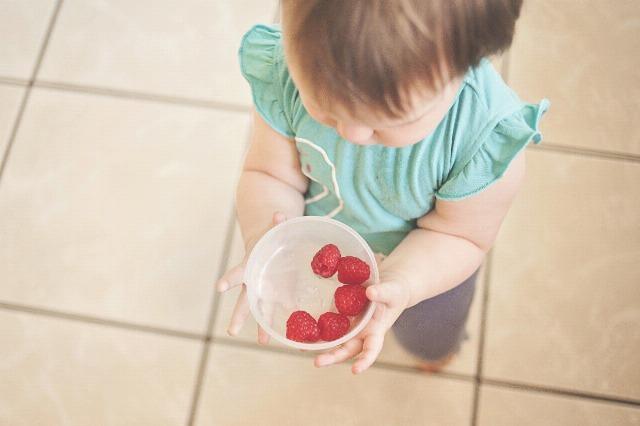 Foto 5 desayunos saludables para que los niños lleven al colegio