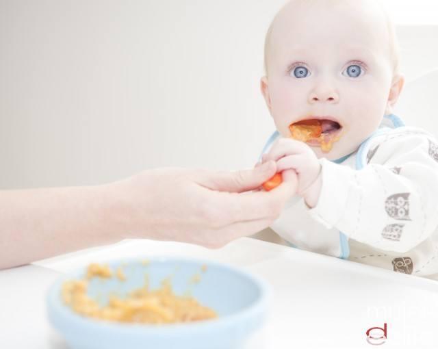 Foto Reglas básicas en la dieta del bebé