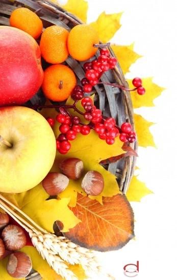 Foto Dieta rica en alimentos antioxidantes y llenos de vitaminas para hacer frente al invierno