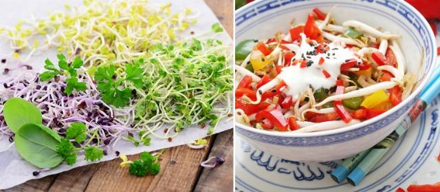 Foto Las propiedades de los germinados de soja