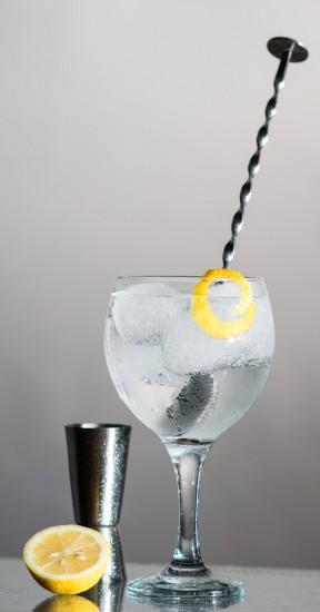 Foto La cantidad de ginebra es esencial para un gintonic perfecto