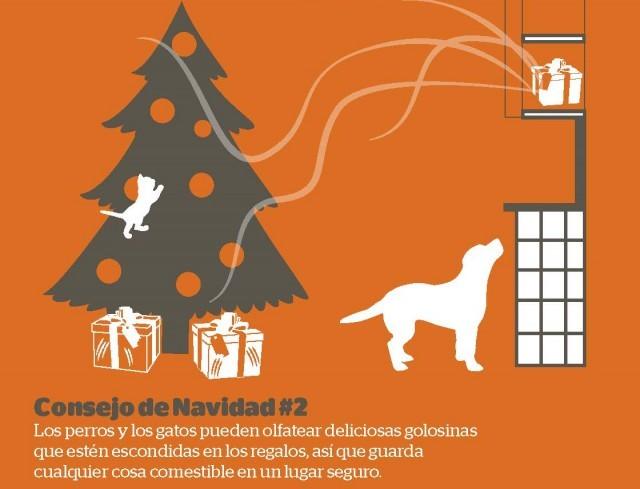 Foto Mantén fuera del alcance de perros y gatos las golosinas navideñas