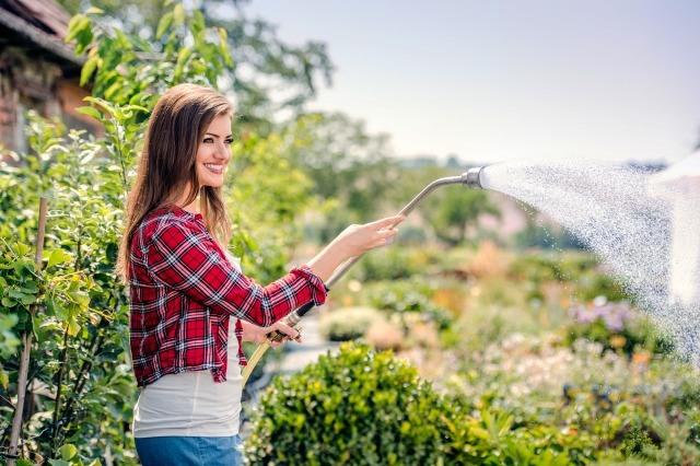 Foto Consejos para mantener perfecto el jardín en verano