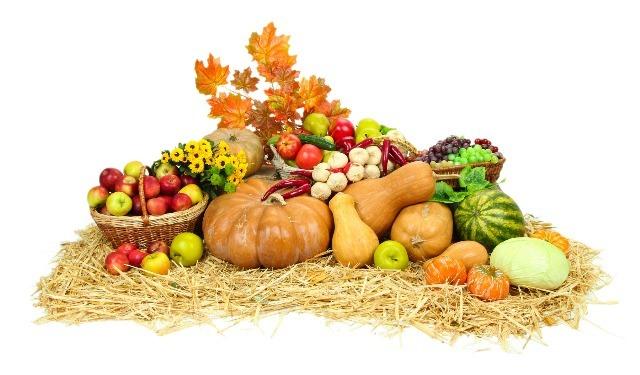 Foto Los alimentos vegetales imprescindibles del otoño