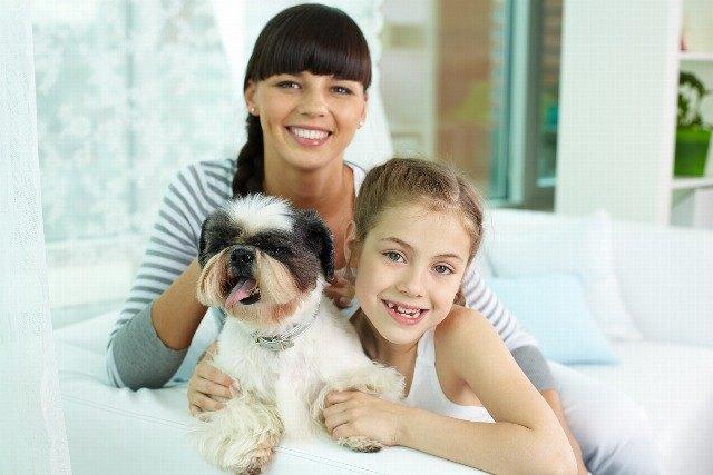 Foto Consejos para adoptar una mascota