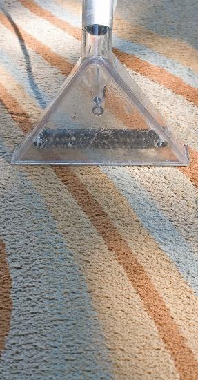 Foto Utiliza un aspirador con filtro HEPA para combatir los síntomas de la alergia
