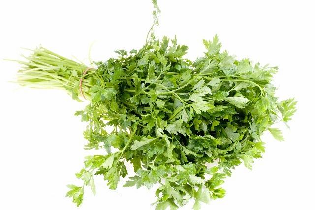 Foto Los extraordinarios beneficios del cilantro