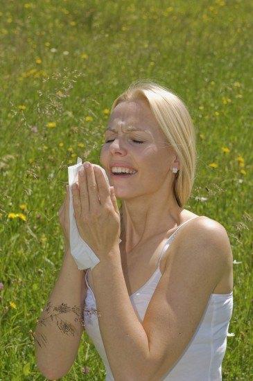 Foto Cómo prevenir y combatir las alergias en primavera