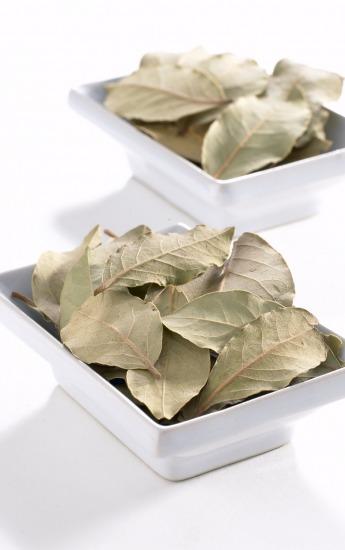 Foto Usos culinarios del laurel y curiosidades
