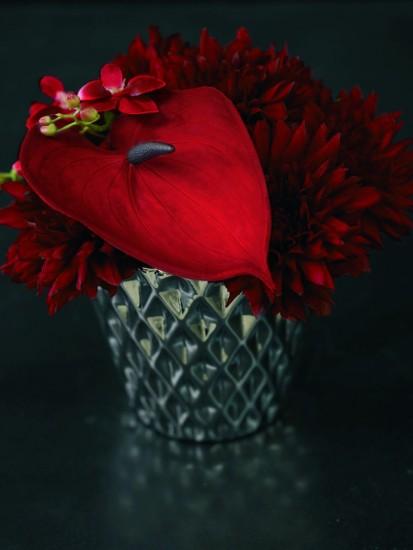 Foto Los arreglos florales en rojo, una apuesta ganadora en la decoración navideña